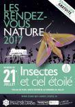 Insectes et ciel étoilé