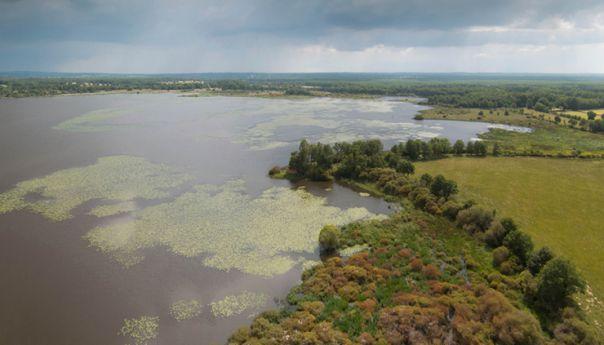 La Réserve naturelle de l'étang des Landes